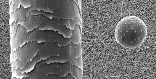 Scientists develop germ-extracting nano-bandage