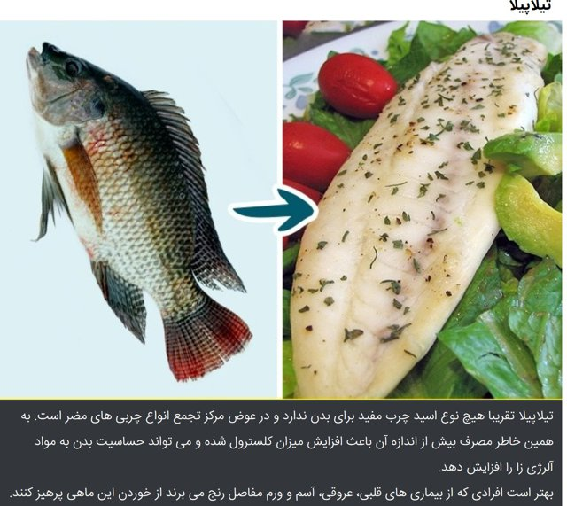 9 kinds of fish you shouldn t eat page 4 for Kinds of fish to eat