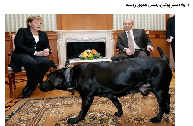 The pets of the political leaders of the world